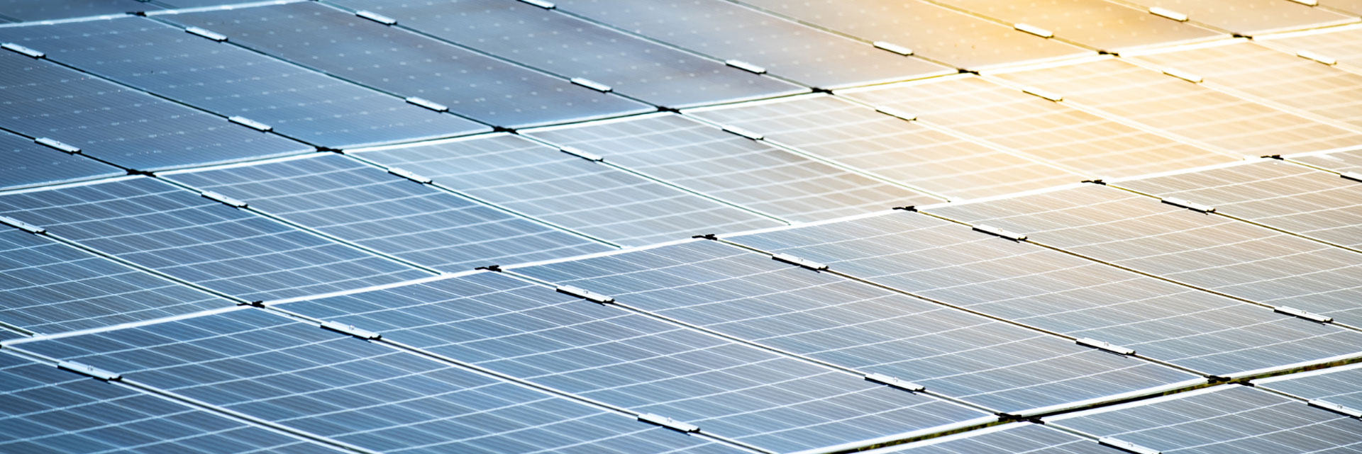 Photovoltaik für eine nachhaltige Zukunft mit erneuerbaren Energien